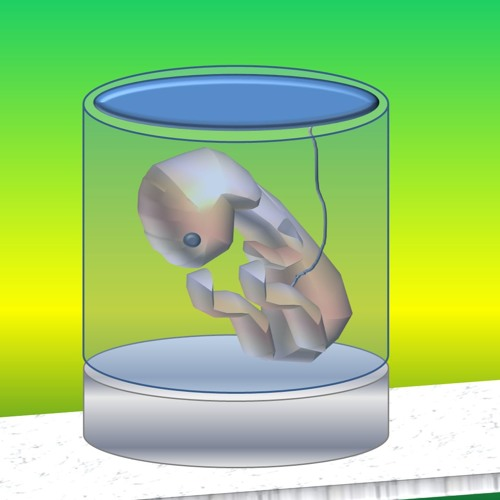 Perspectives et Frustration #13: Uterus artificiel et Mammouth