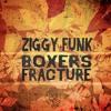 Ziggy Funk - Boxer's Fracture (Album Sampler)