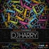 BHANGRA FLASHBACK VOL1 - DJ HARRY RITZY