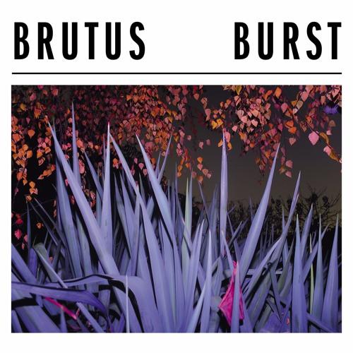 """Brutus """"Burst"""""""