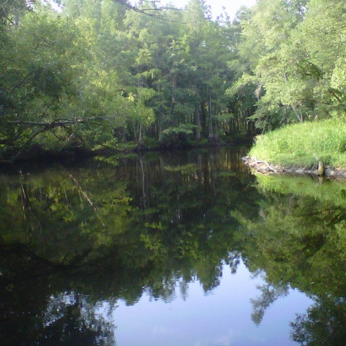 Drowning Creek