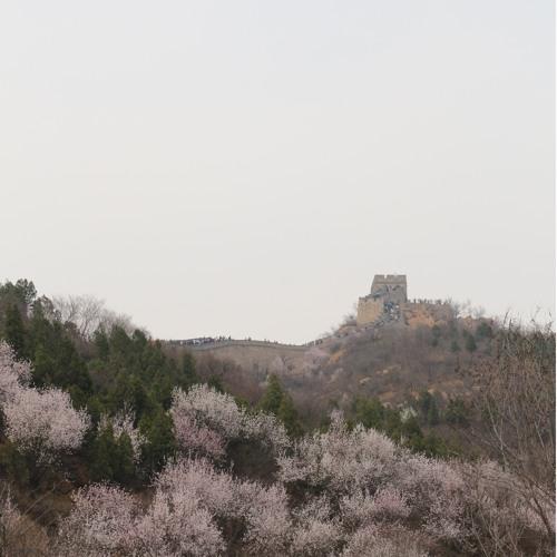 Grupo De Practica De Vida ZhiNeng QiGong 10 PM - 3 de mayo