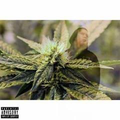 I Just Wanna Smoke ft. Optimistic