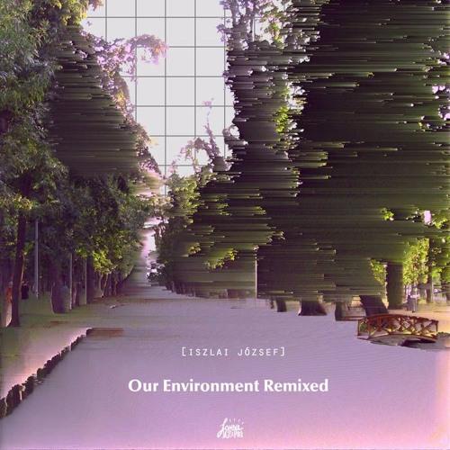 Iszlai - Our Environment Remixed - 07 - Mollis