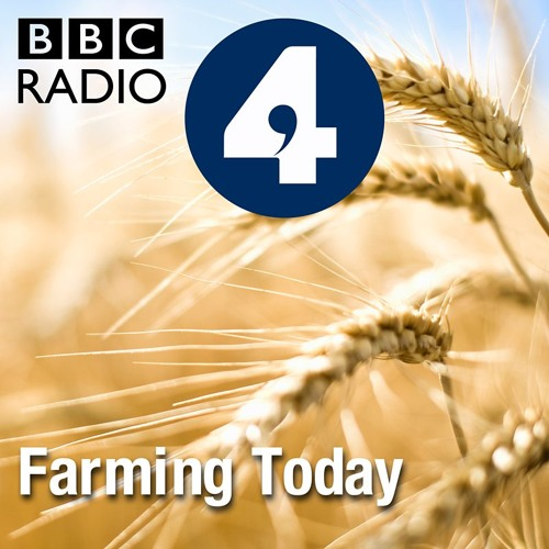 Farming Today: EU agricultural reform (BBC Radio 4, May 2017)