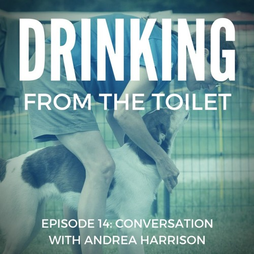 #14 - Conversation with Andrea Harrison
