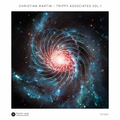 Christian Martin - Gonna Make It (PREVIEW CLIP)