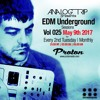 Analog Trip @ EDM Underground Sessions Vol025 Protonradio 9-5-2017 | Free Download