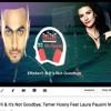 Eftekerli & It's Not Goodbye, Tamer Hosni Feat Laura Pausini MashUp By DJ Nadeem