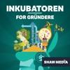 Historien bak seriegründeren, regissøren, musikeren og båtbyggeren Jan Vardøen