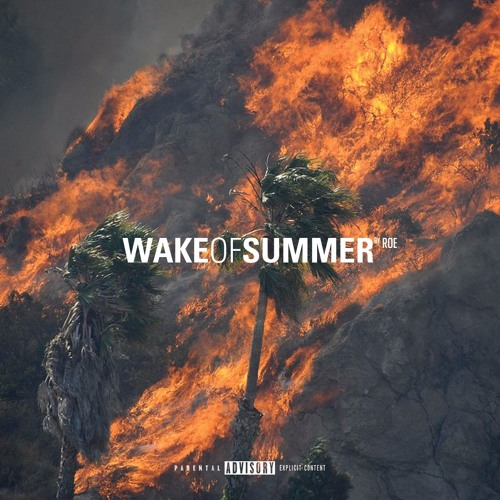 Wake of Summer