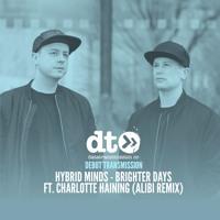 Hybrid Minds - Brighter Days ft. Charlotte Haining (Alibi Remix)