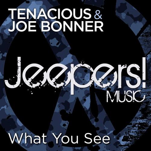 Tenacious & Joe Bonner - What You See - Edit