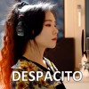 Luis Fonsi - Despacito (Cover  J.Fla) mp3