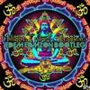 Hilight Tribe - Shankara (Edem Edmzon Bootleg)