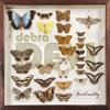 Butterfly (Wild Little Girl EP)