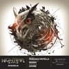 Sinden & Coone & Pasquale Rotella - Night Owl Radio 090 2017-05-13 Artwork