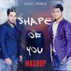 Shape of You - Ed Sheeran | Shawn Mendis | Sanuka | Iraj | Ranidu | Mihindu | Rookantha -  Mashup