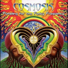 Cosmosis - The Eternal Now