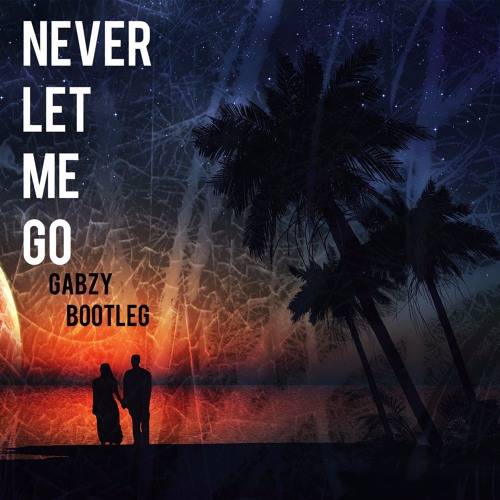 Baixar Alok - Never Let Me Go (Gabzy Bootleg)[FREE DOWNLOAD]