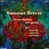 Summer Breeze (boiJangles Take ft. Dr Phat's Band)