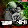 DJ ROY TRIBUTE TO MAMA MOTHERS DAY REGGAE MIX 2017