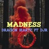 Dragon Heartz Feat. DJR - The Madness (Official Audio)
