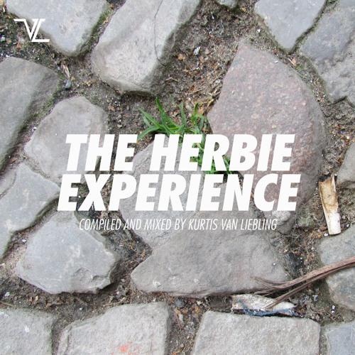 The Herbie Experience by Kurtis van Liebling