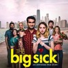 The Big Sick 2017 English HD Movie Download Audio Recording on Monday evening