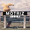 Motriz - Flow (Original Mix) [Out Now]