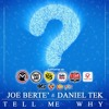 "Joe Berte' & Daniel Tek ""Tell Me Why"" (Radio Edit)Net's Work Records"