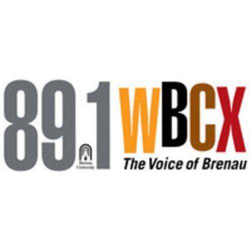 WBCX: 2017 President's Summer Art Series Artists