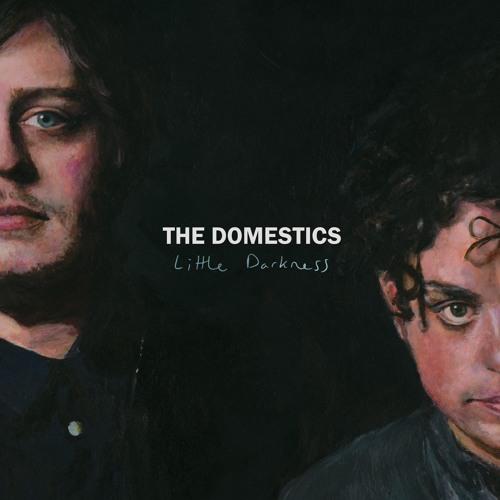 The Domestics - Little Darkness