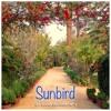 Sunbird - an audio documentary