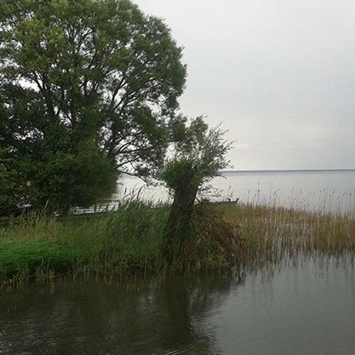 Rain At The Mueritz Lake - Adagio