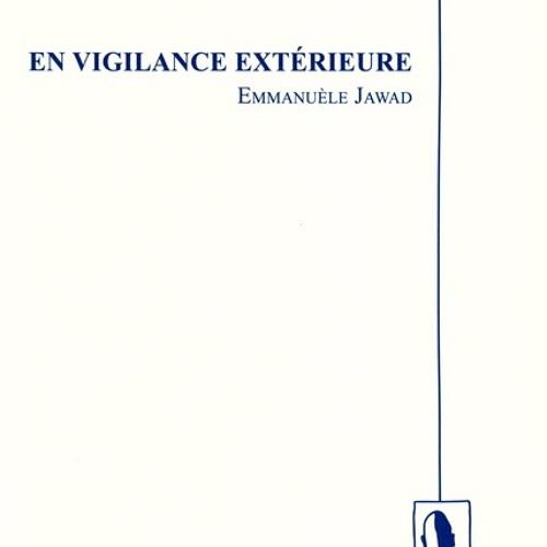 VD En Vigilance Extérieure[1]