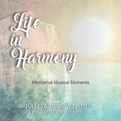Life in Harmony: Meditative Music Moments