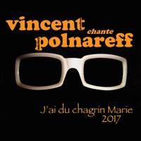 """""""J'ai du chagrin Marie"""" Michel POLNAREFF - Cover Vincent Prudhon"""