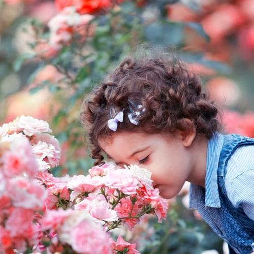 Smell The Roses-Lagrange Point