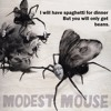 Modest Mouse - King Rat (2007 demo)