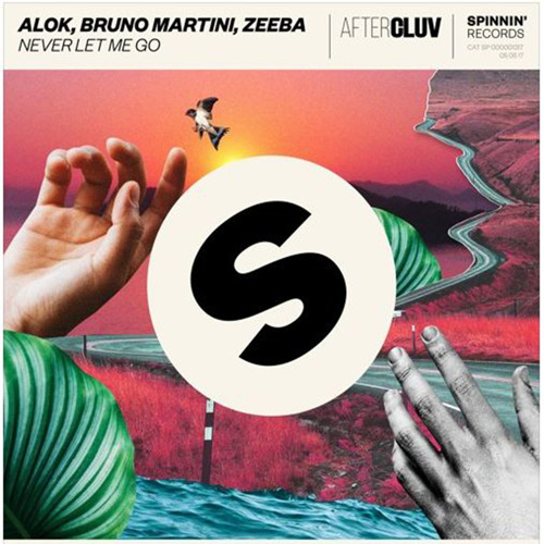 Baixar Alok, Bruno Martini & Zeeba - Never Let Me Go (Viidra Bootleg)Free Download