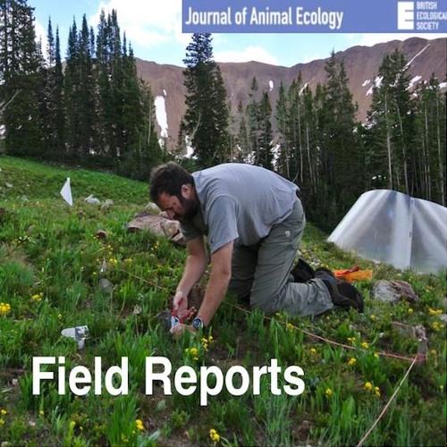 Field Reports