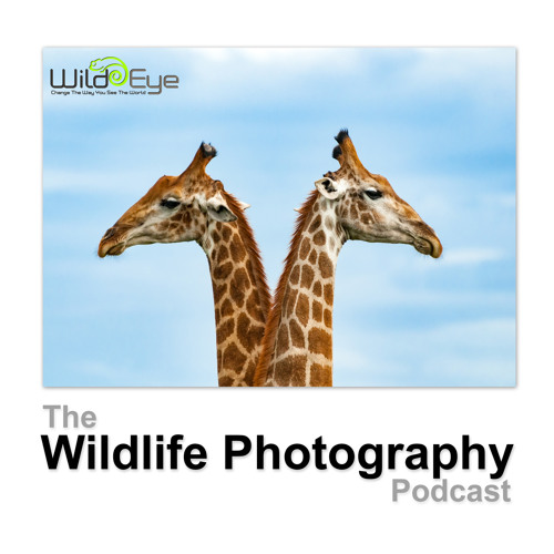 Episode 40 - Andrew And Jono Discuss Namibia
