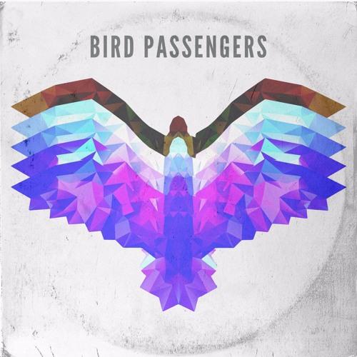 Bird Passengers - Running Out Of Time (Monoplan Remix)