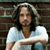 Doesn't Remind Me (A tribute to Chris Cornell)