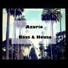 Azurio - Bass & House #9 2017-05-18 Artwork