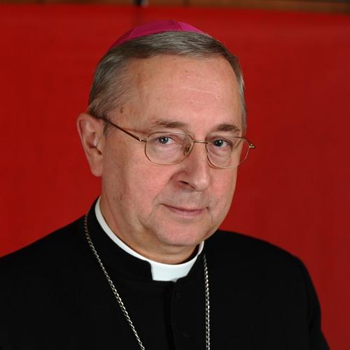 Abp Gądecki - relacja po spotkaniu Prezydium CCEE z Ojcem Świętym
