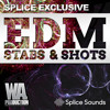 SPLICE EXCLUSIVE: EDM Stabs & Shots | 41 Ultimate Brass Stabs