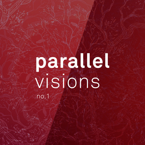 Parallel Visions no.1