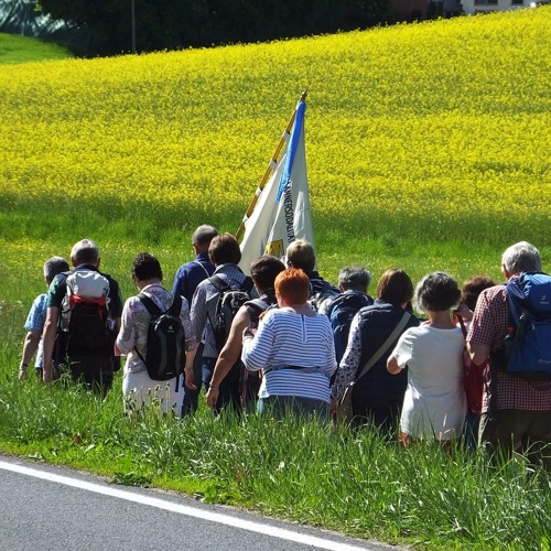 857 Kilometer Fränkischer Marienweg